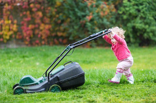Ваша первая зеленая лужайка газон для начинающих - самые важные советы