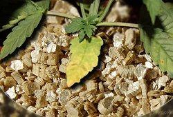 Vermikulit za cvijeće
