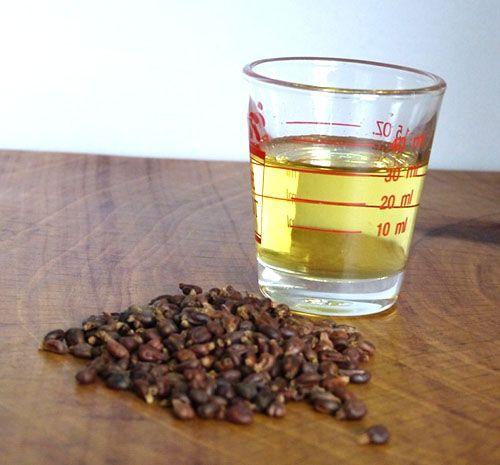 Виноградное масло полезные свойства и противопоказания