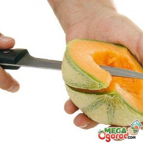 Nepremičnine melone melona