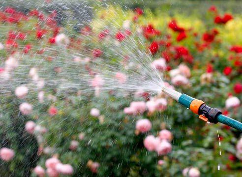 Загородное водоснабжение: садовые насосы